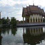 The Wat