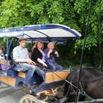 A ride in a jaunting cart, Killarney National Park