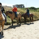 green acres horse beach rides =)