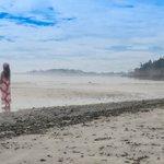 Misty morning beach