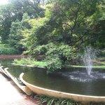 Glencairn Gardens