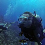 Diving - Dive Provo