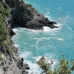 view from the cliffs between Vernazza and Monterosso
