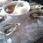 Super fresh oysters
