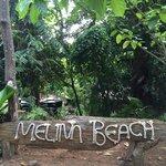 Arrivée à Melina Beach par la jungle (derrière)