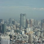 View of Tokyo city from Government Building