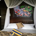 Bali Belva excellence!
