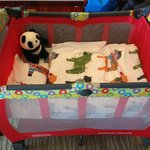 Lovely Panda in the Baby Crib