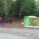 camp site 136