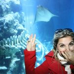 SEA LIFE AQUARIUM LONDRES