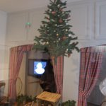 Tree hung from the ceiling- not in a floor stand.