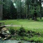 Brooktrails Golf Course in Willits