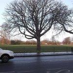 Parco Clapham