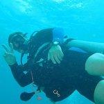 Fantastic Diving