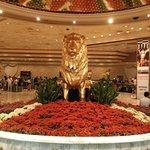 That famous lion