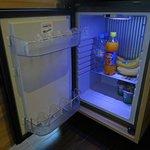 Kylskåp i dubbelrum