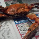 Maryland Blue Crabs are sold by the Dozen, 1/2 Bushel, Full Bushel