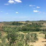 Tuscan Views