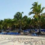 la plage et ses nombreux transats!