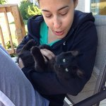 Cottage deck with local kittens to love on