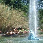 jardín Zoológico de Guadalajara