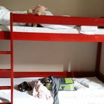 First night bunk bed