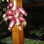 Cipolle di Tropea