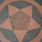 Famous footprints