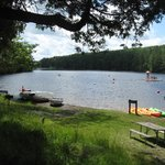 beach/grassy area and canoe/rowboat rentals