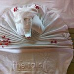 so cute what they do with your towels!