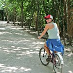 Biking through the jungle. You will be hard pressed to find a bike for taller people.