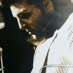 Steve Michaels as Elvis