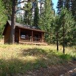 Mustang Cabin #5
