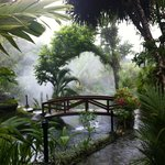 hot springs steam