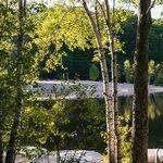 Early Morning at Otter Lake