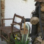 A quirky corner of the garden