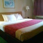Econo Lodge, Kingsland, GA 7/14 Bed