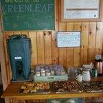 Greenleaf Hut