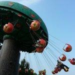 apple flight