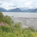 Turnagain Arm fmudflats near Hope, AK - waiting to see the Boretide!