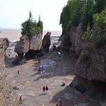 Hopewell Rocks Tide DOWN