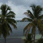 Palms overlooking Gulf Beach