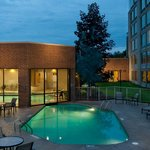 Inddor/Outdoor Pool