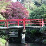 Main Bridge