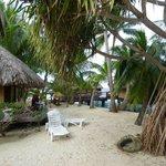 the beach bungalows