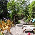 Sunny peaceful garden