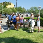 Pony Rides in Hotel Grounds