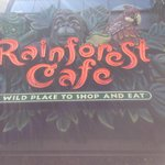 Rainforest cafe San Francisco