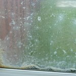 Condensation and mould in the double glazed windows