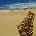 Sand statues